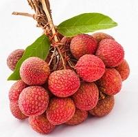 Экзотический фрукт личи: полезные свойства, вред, как выбрать и хранить